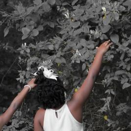 two Black girls picking honeysuckle