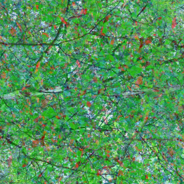 abstract art green and red leaves